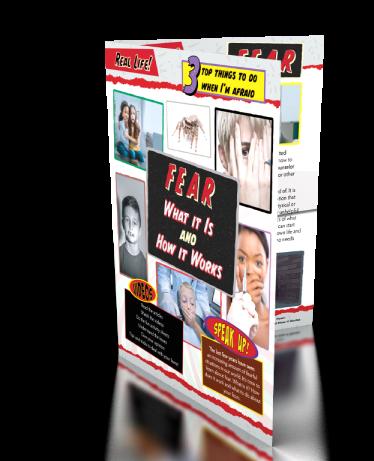Fea Educational Booklet